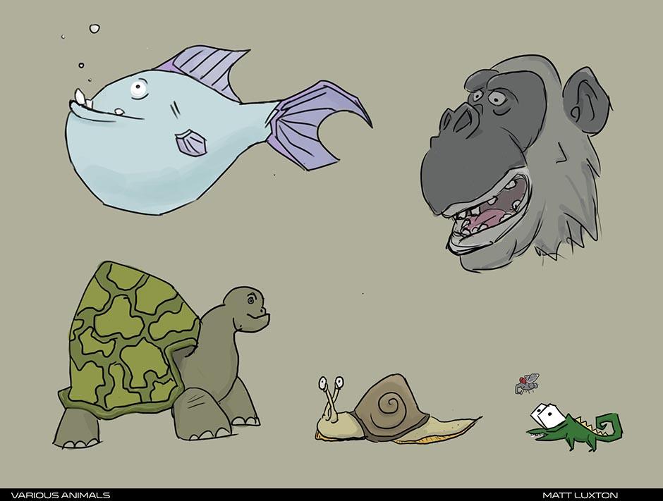 Animals small